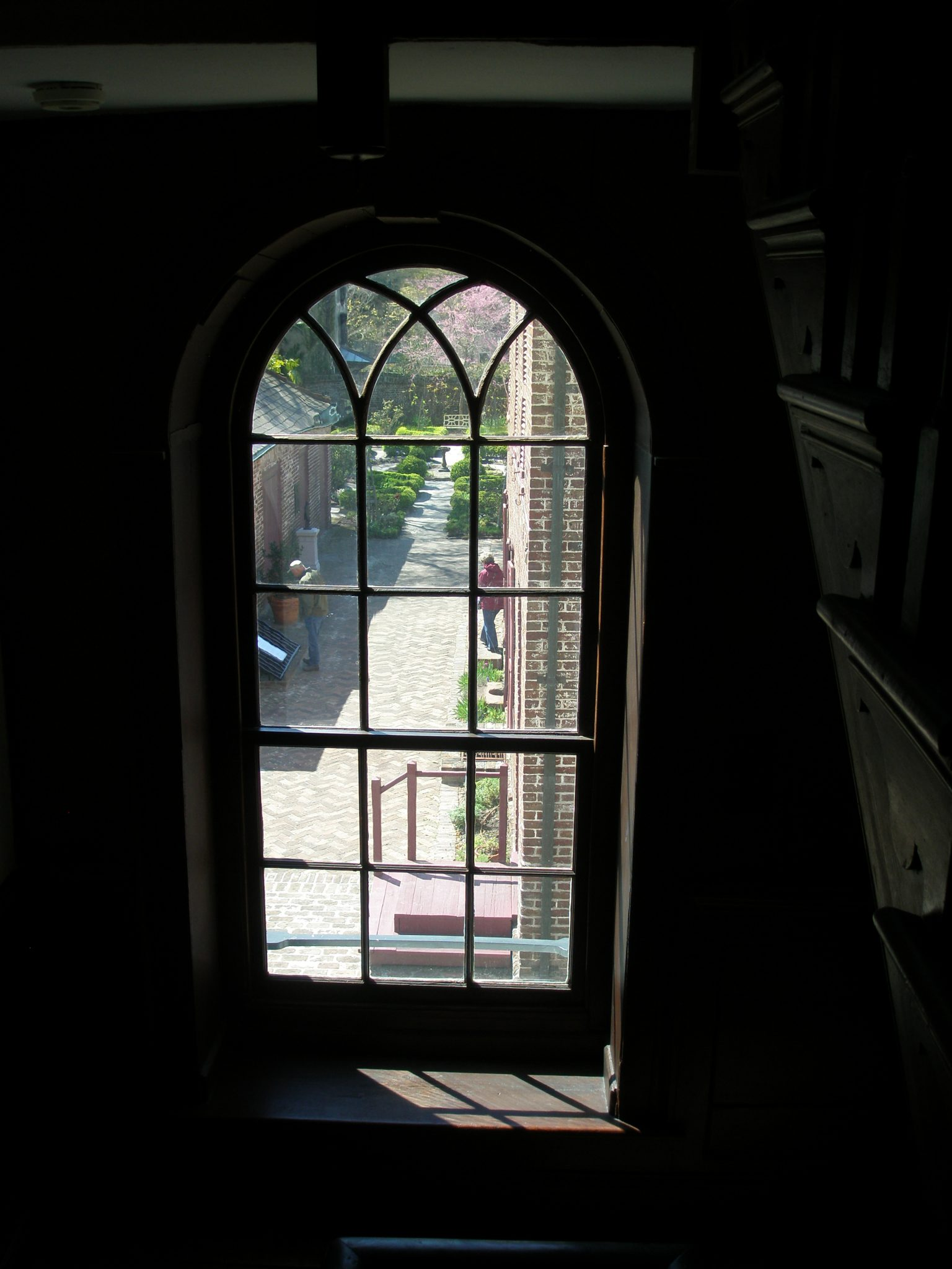 A glimpse of the back garden, from Main House stairwell