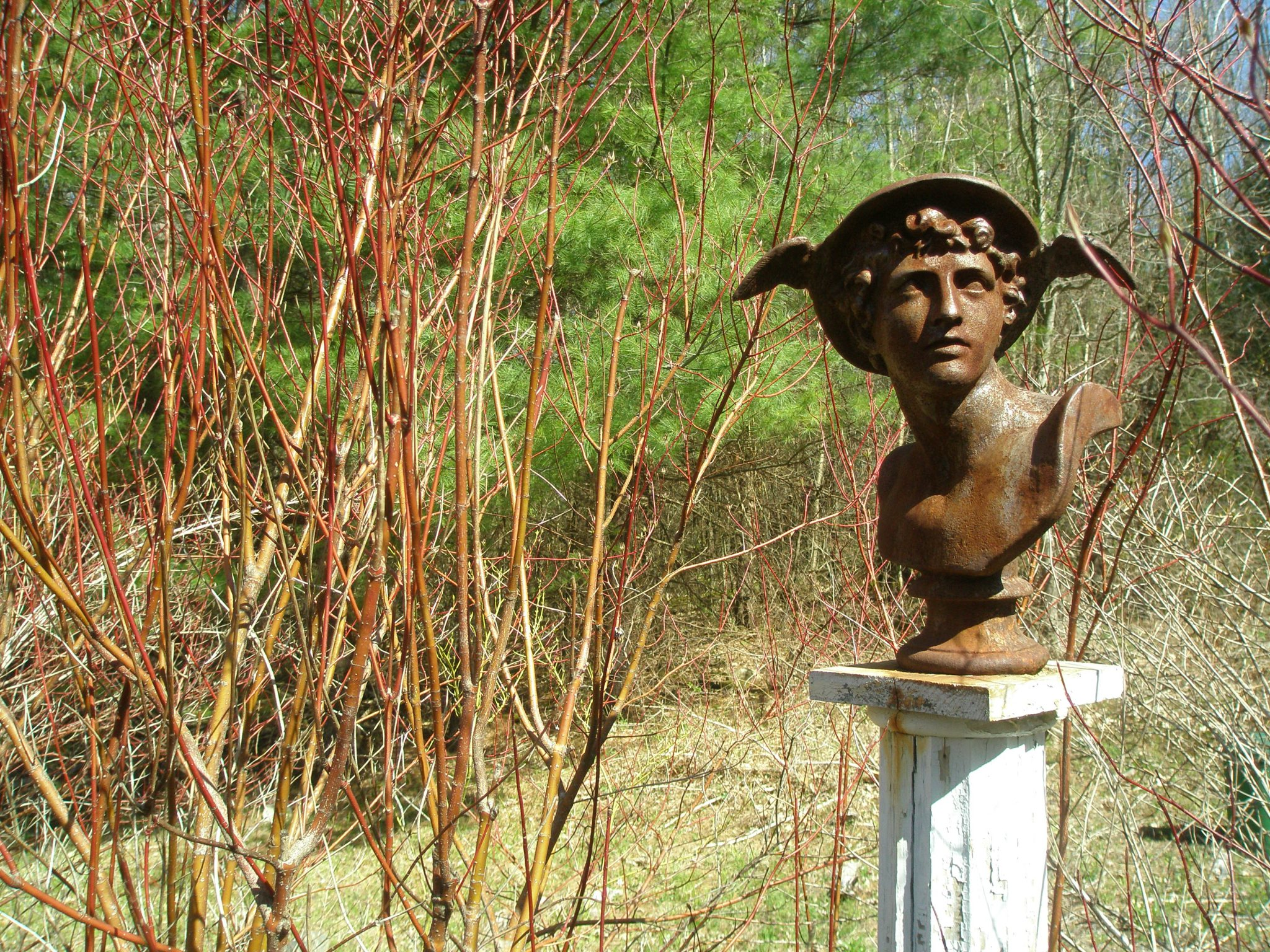 My All-Purpose, Backyard Deity. Hermes--protector and patron of travelers & poets--is the god of boundaries and transitions, message-carrier between the mortal and divine worlds. This is a tricky fellow, whose mercurial nature is never quite clear. He watches over me...but keeps me on my toes.