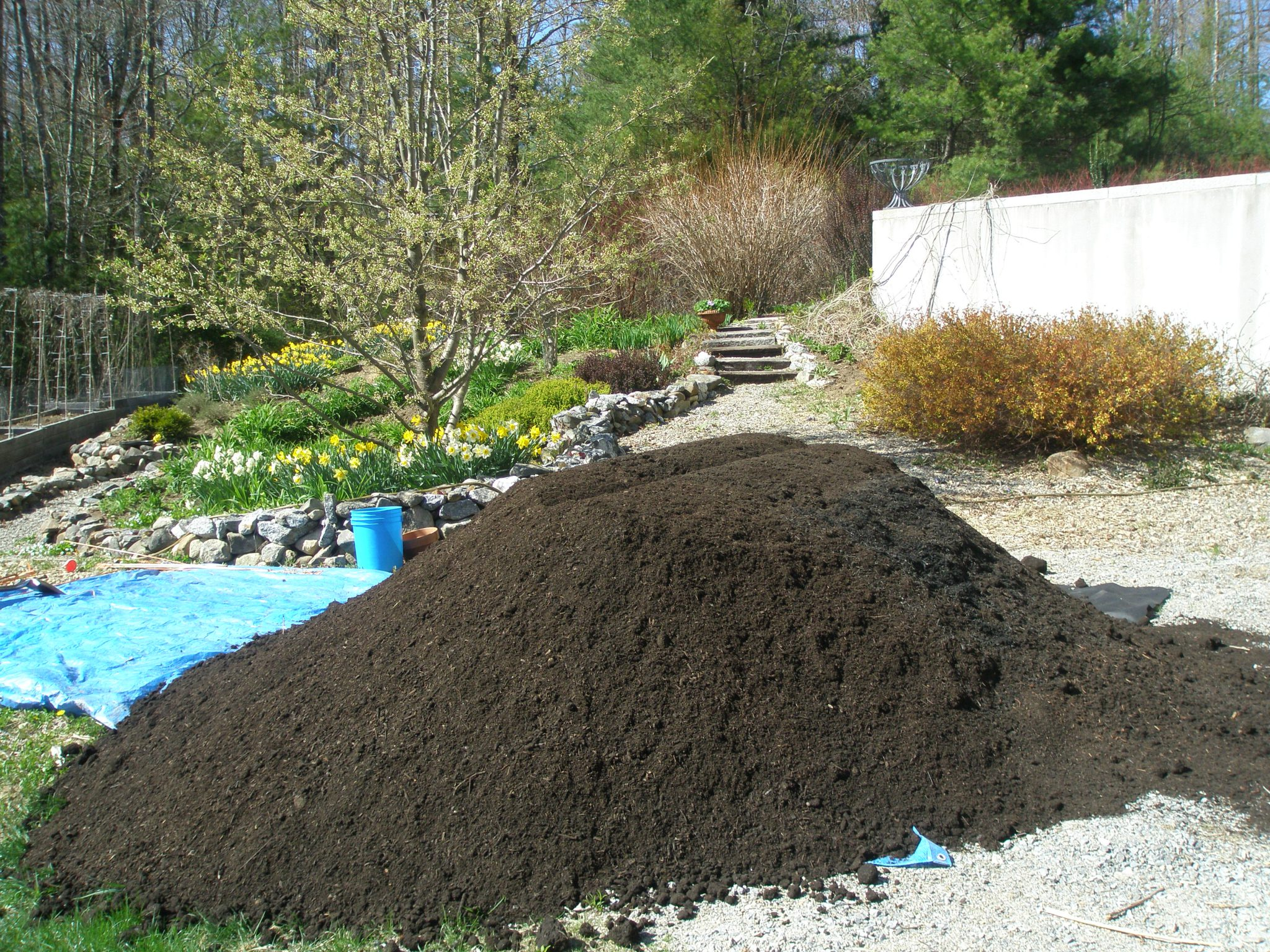 This what The Whole Nine Yards looks like. My fate, over the next month, will be to distribute this smelly, steaming pile of organic compost/mulch/and peat humus over the garden beds that need nourishment.