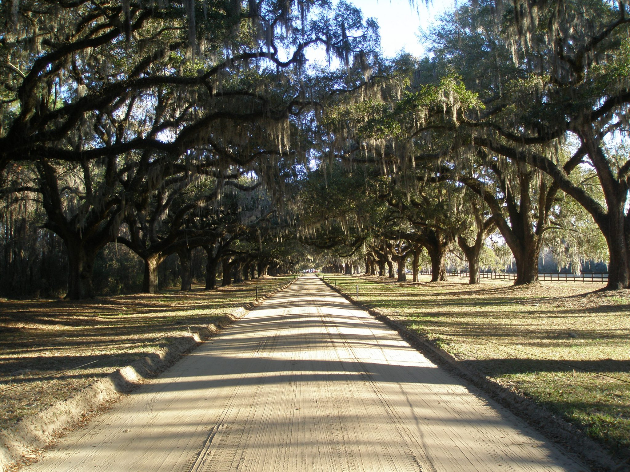 The Avenue of Oaks, at Boone Hall Plantation. The Plantation is located next to Wampancheone Creek, which flows into Horlbeck Creek, and then into the Wando River. The Wando then flows into the Cooper River, on which one can ride the tide right into Charleston.