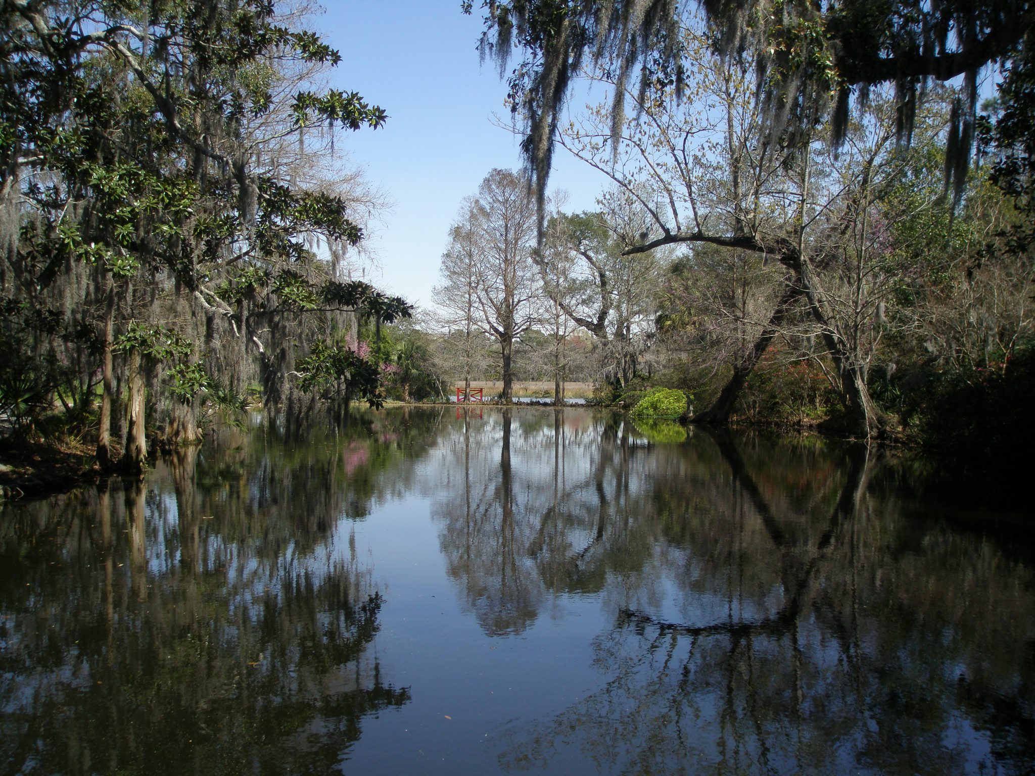 Beauty Mirrored: tranquil waters reflect cypress trees and a red gate, alongside the Ashley River.