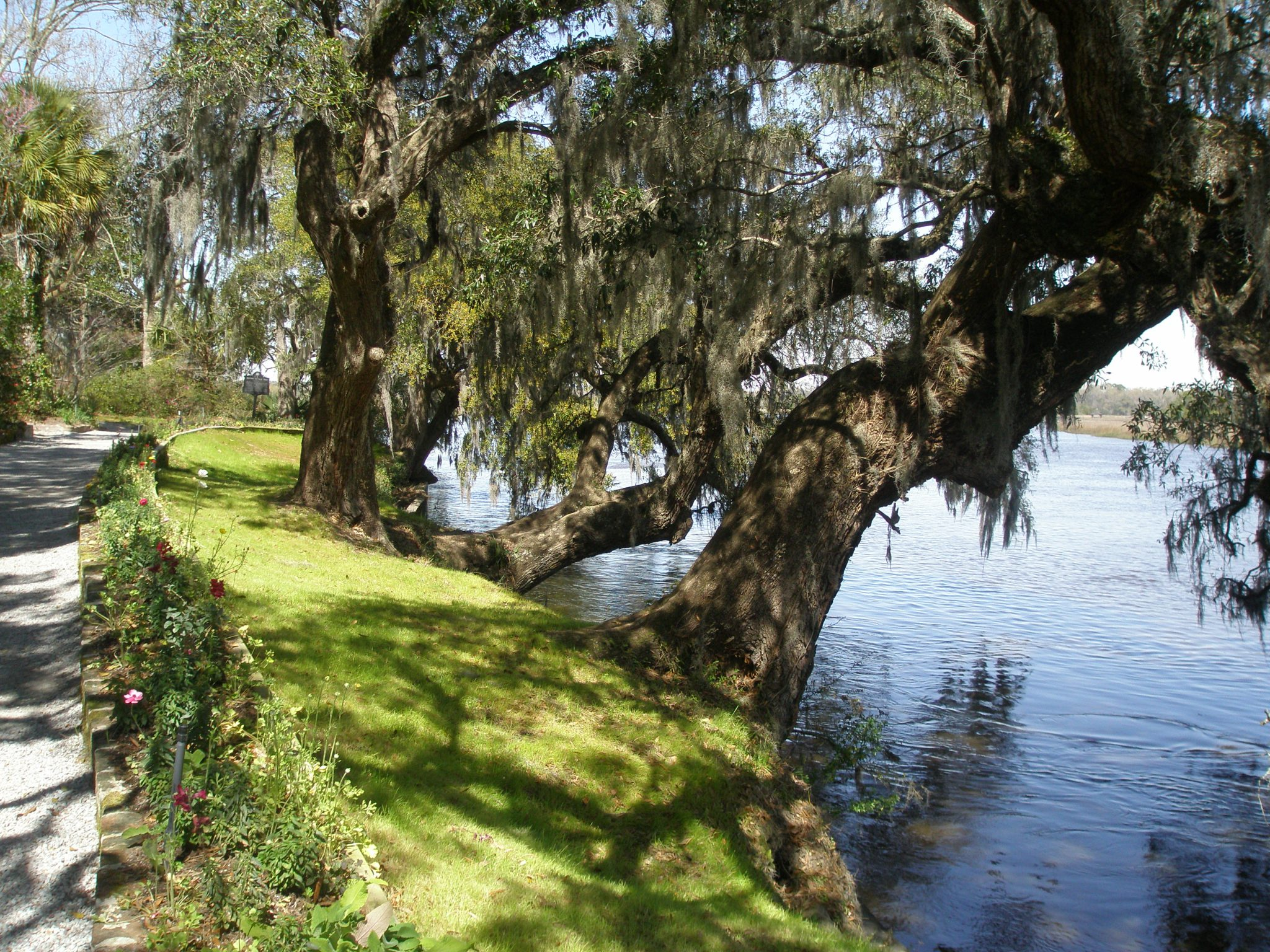 Garden Walk alongside the Ashley River