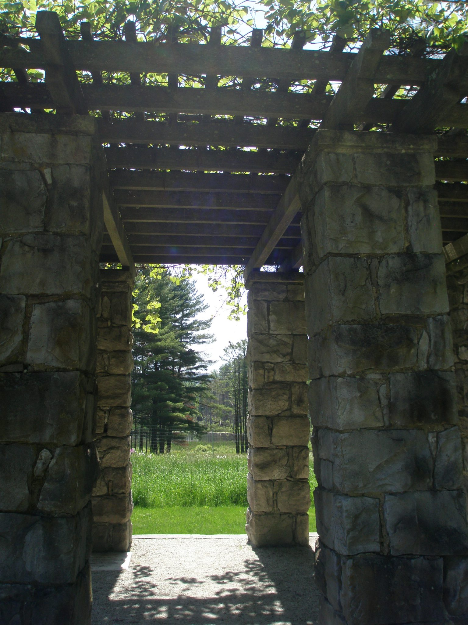 Pergola view of Laurel Lake