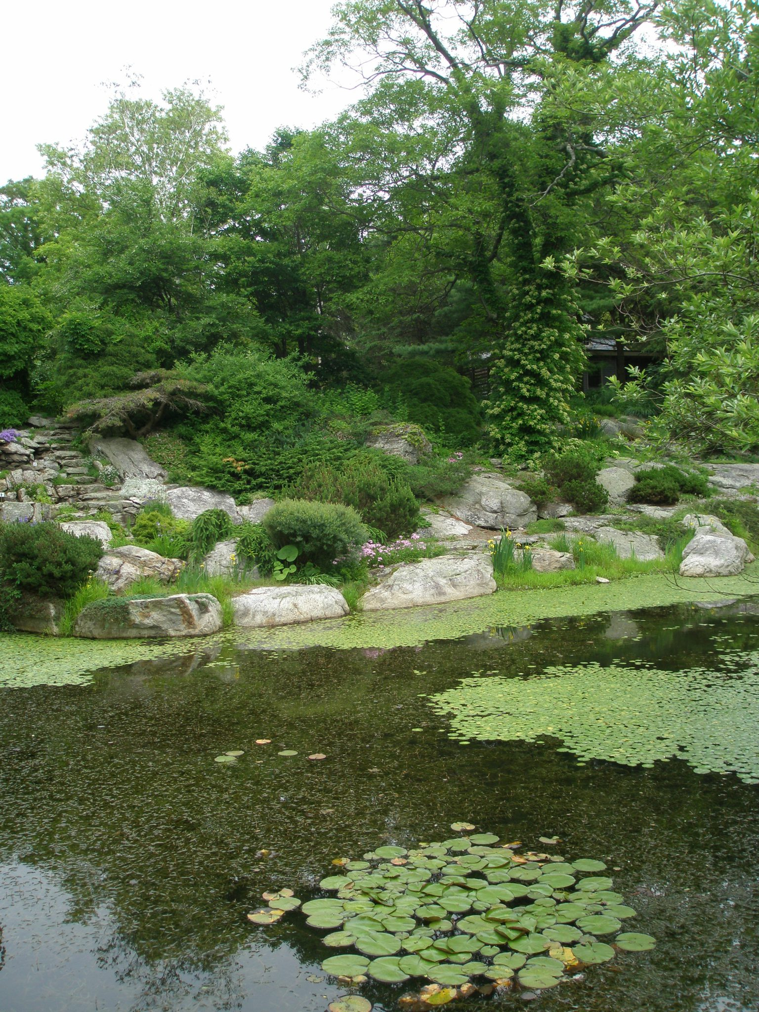 The Lake and Rock Ledge Garden