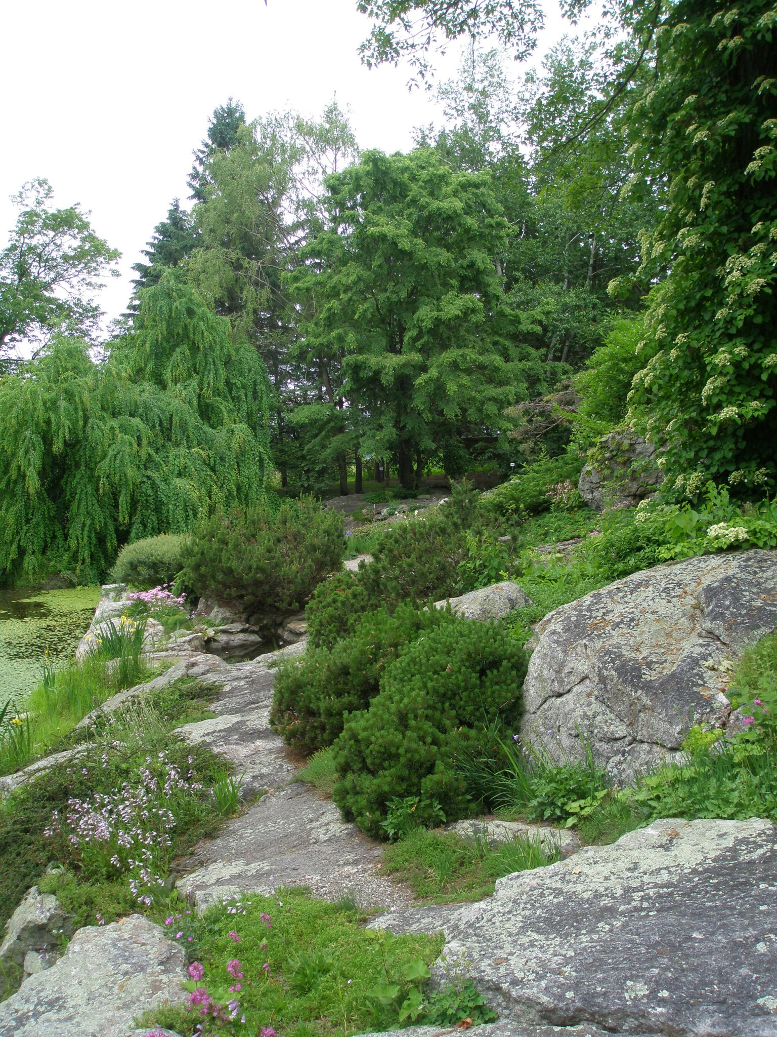 The Rock Ledge Garden