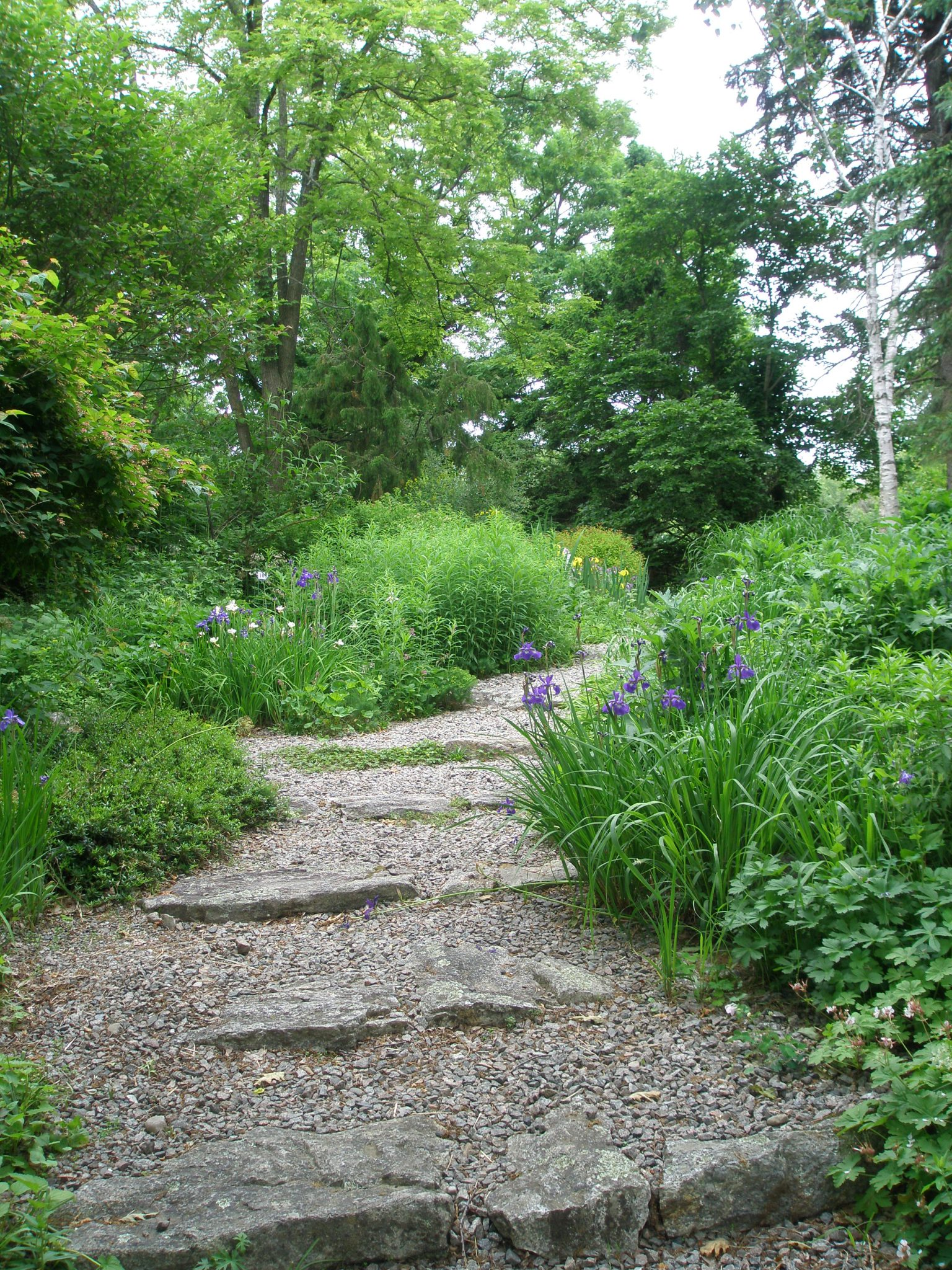 Path leading out of the Rock Ledge Garden