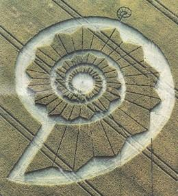 English Crop Circle. Image courtesy of Sunday Times Magazine