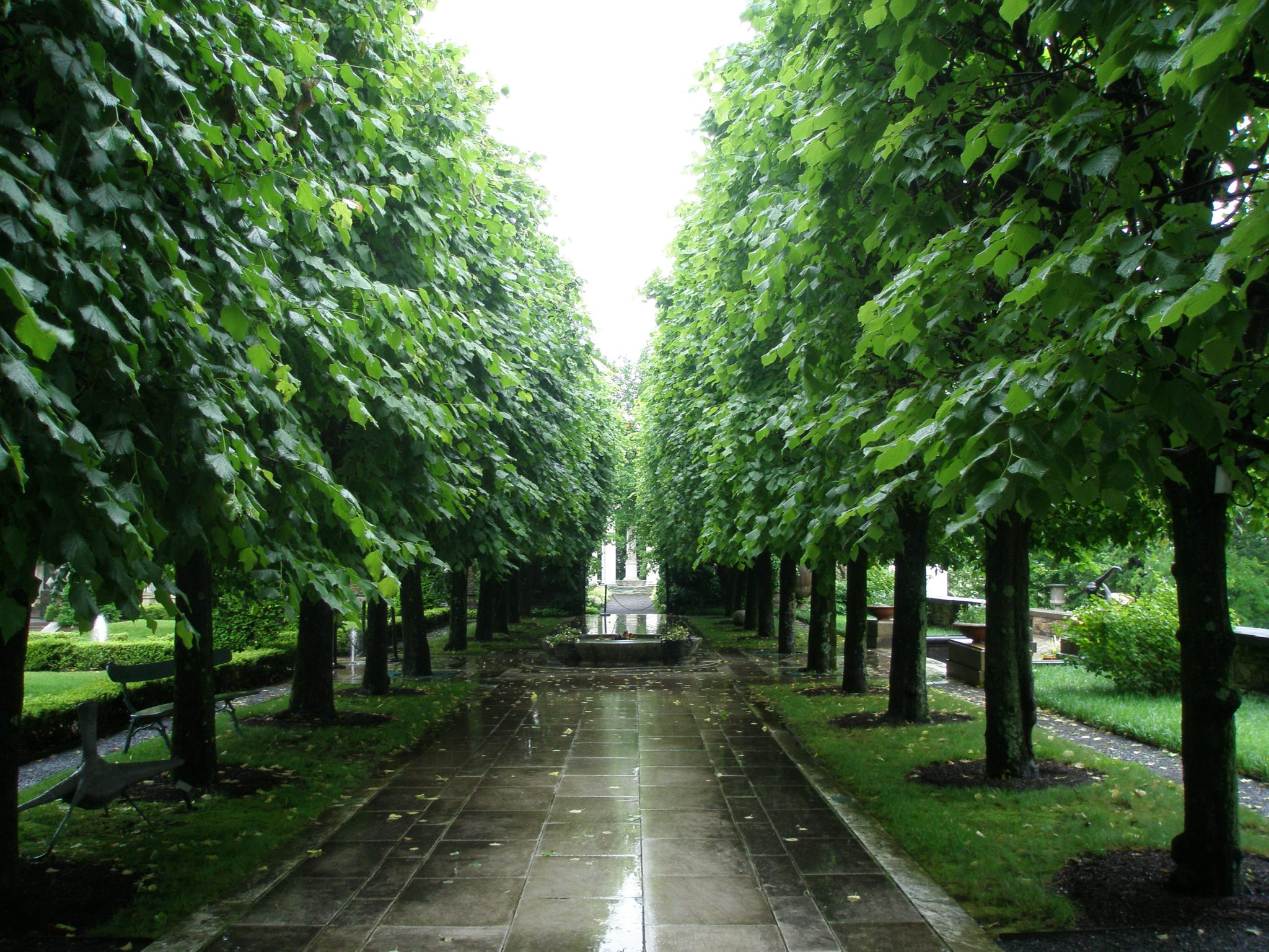 The Linden Allee, which terminates at the Classical Temple/Temple of Venus