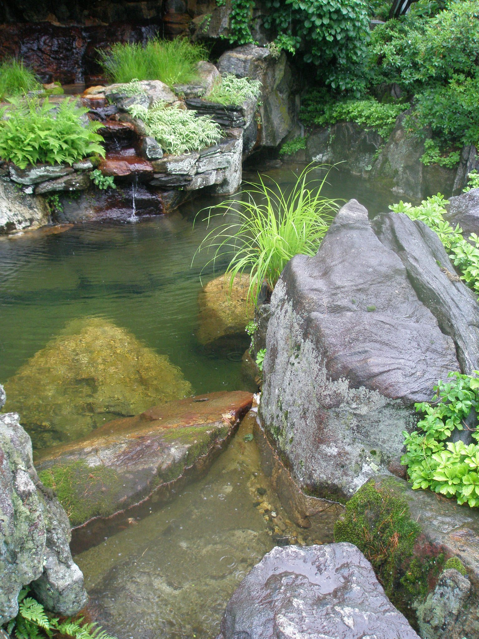Waterside plantings in the Brook Garden
