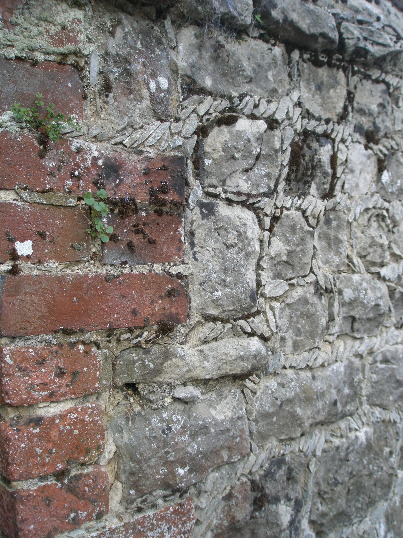 Masonry wall detail, in Courtyard