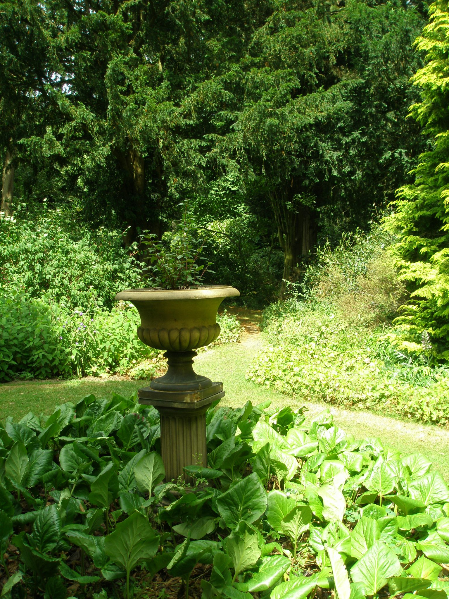 Woodland paths radiate from behind the Doulton Urn, which was the first garden ornament that Joy Cameron bought. The yew tree (Taxus baccata) on the right is over 150 years old.
