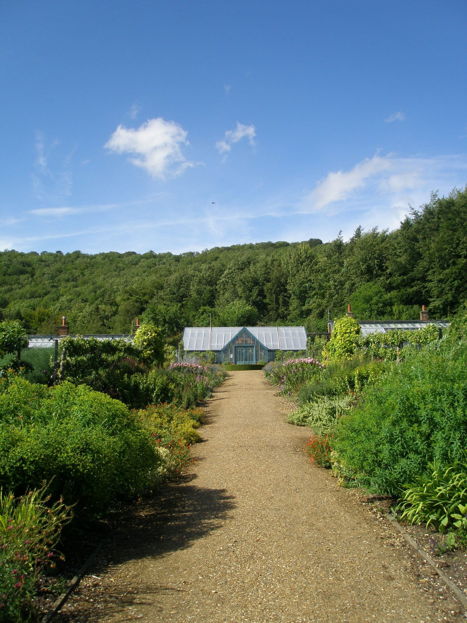 A view uphill, toward the glasshouses