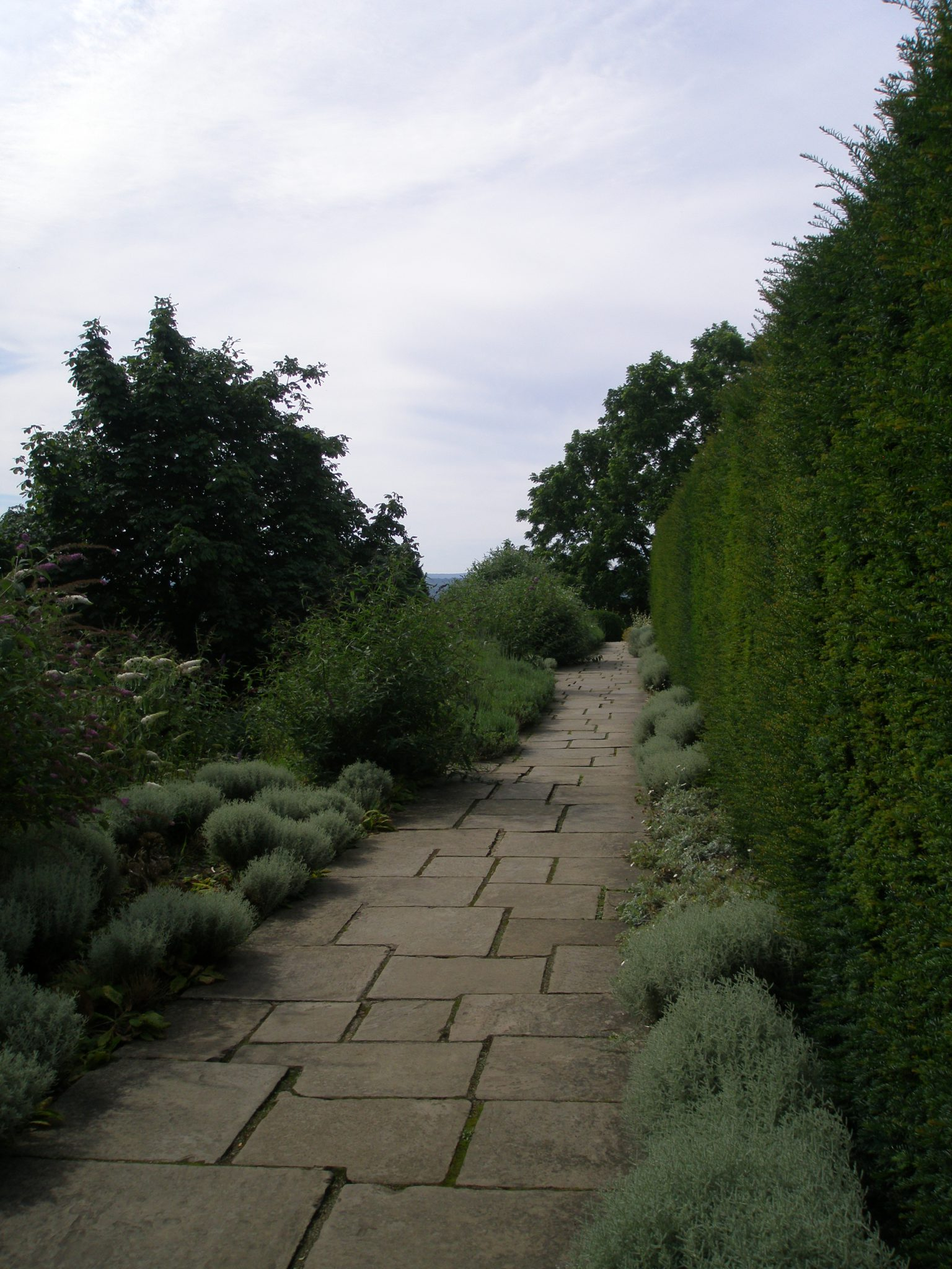 The Butterfly House Walk begins at the southwest corner of the Terrace Lawn, and is lined on the right by a high yew hedge. To the left, the land slopes away to the Orchard. Clementine planted these borders with buddleias to lure the butterflies that Churchill loved to see in the garden. Worried about the decline in Britain's native species, Winston called in a butterfly breeding expert for advice on converting the summer-house at the end of this walk into a place to incubate butterfly larvae.