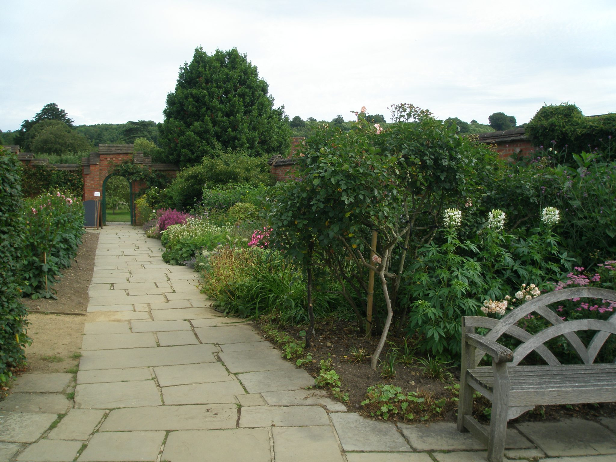 The Edges of the Kitchen Garden