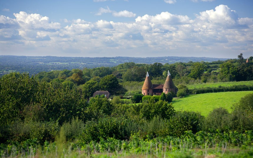A typical Kentish-Scene, with the conical roofs of Oast Houses, piercing the sky.