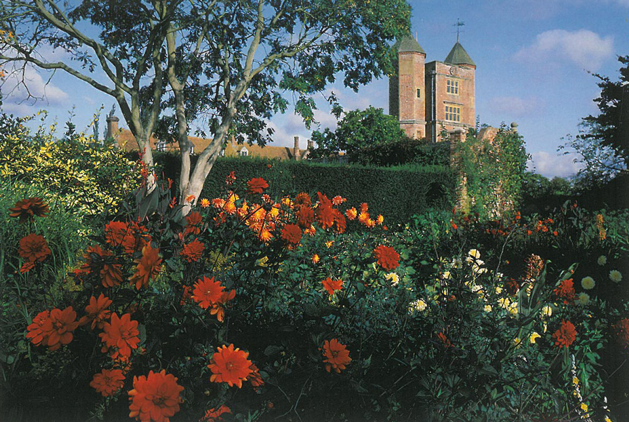 Mixed Dahlias in the Cottage Garden, with the Tower in the distance. Image courtesy of The National Trust.