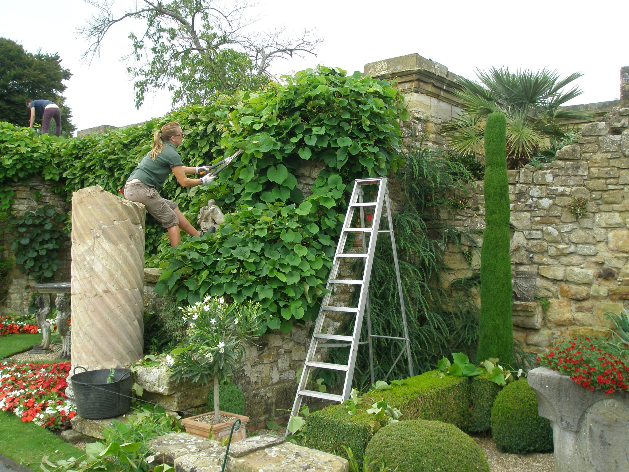 A Gardener's work is never done: maintaining a small stretch of The Pompeiian Wall borders.