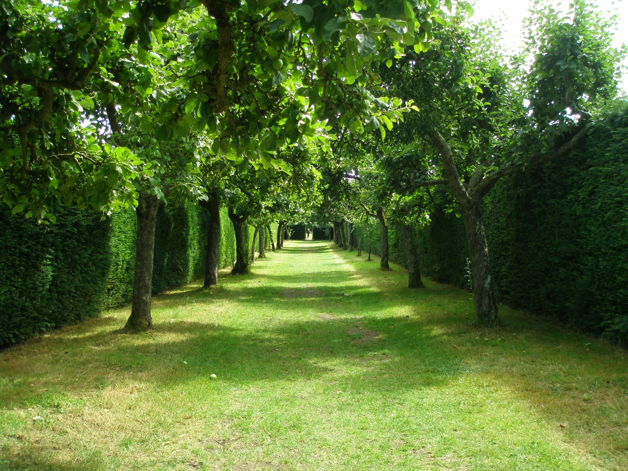 "We penetrate deeper into the Gardens. A series of yew hedges, which subdivide 11 acres of ground into a series of small garden ""rooms,"" and which total a mile in length, were planted in the 19th century."