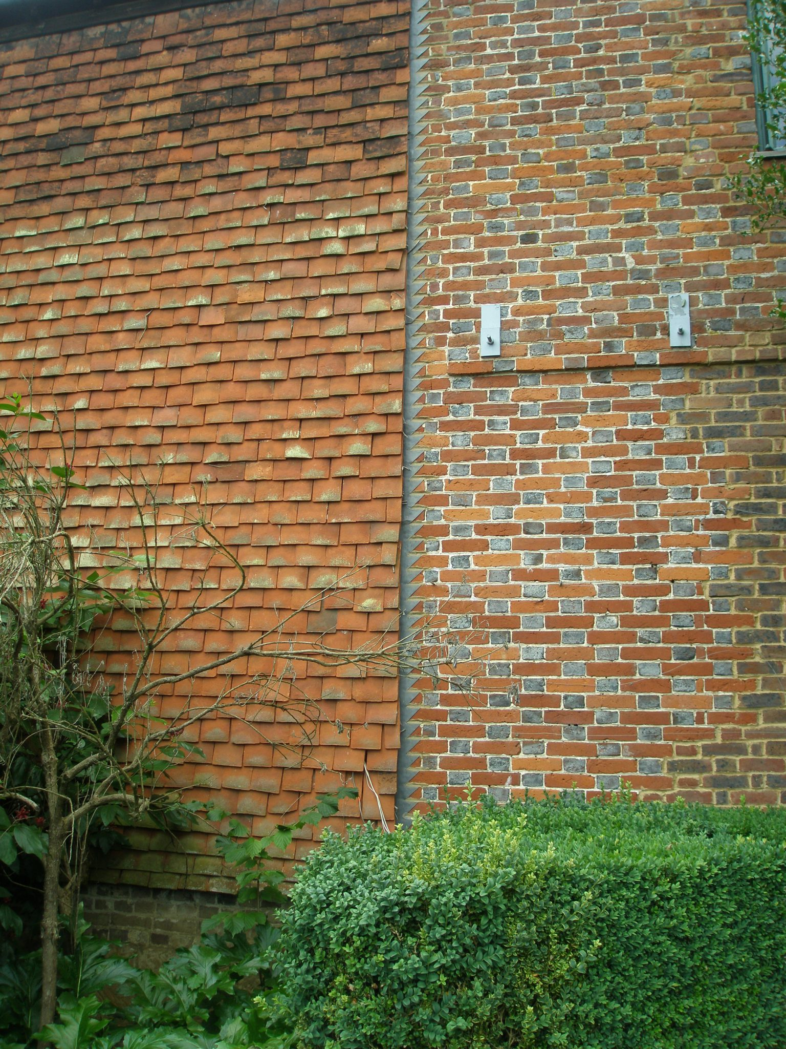 "The Cottages adjacent to the Oriental Garden offer excellent examples of Kentish tile-hung walls. This method of covering the exteriors of timber-framed houses first appeared in the late 17th century. The tiles are hung on oak laths, with the upper part of each tile bedded into a lime and hair mortar known as ""torching."" The laths are hung overlapping to give a triple lap, which results in a weathertight wall."