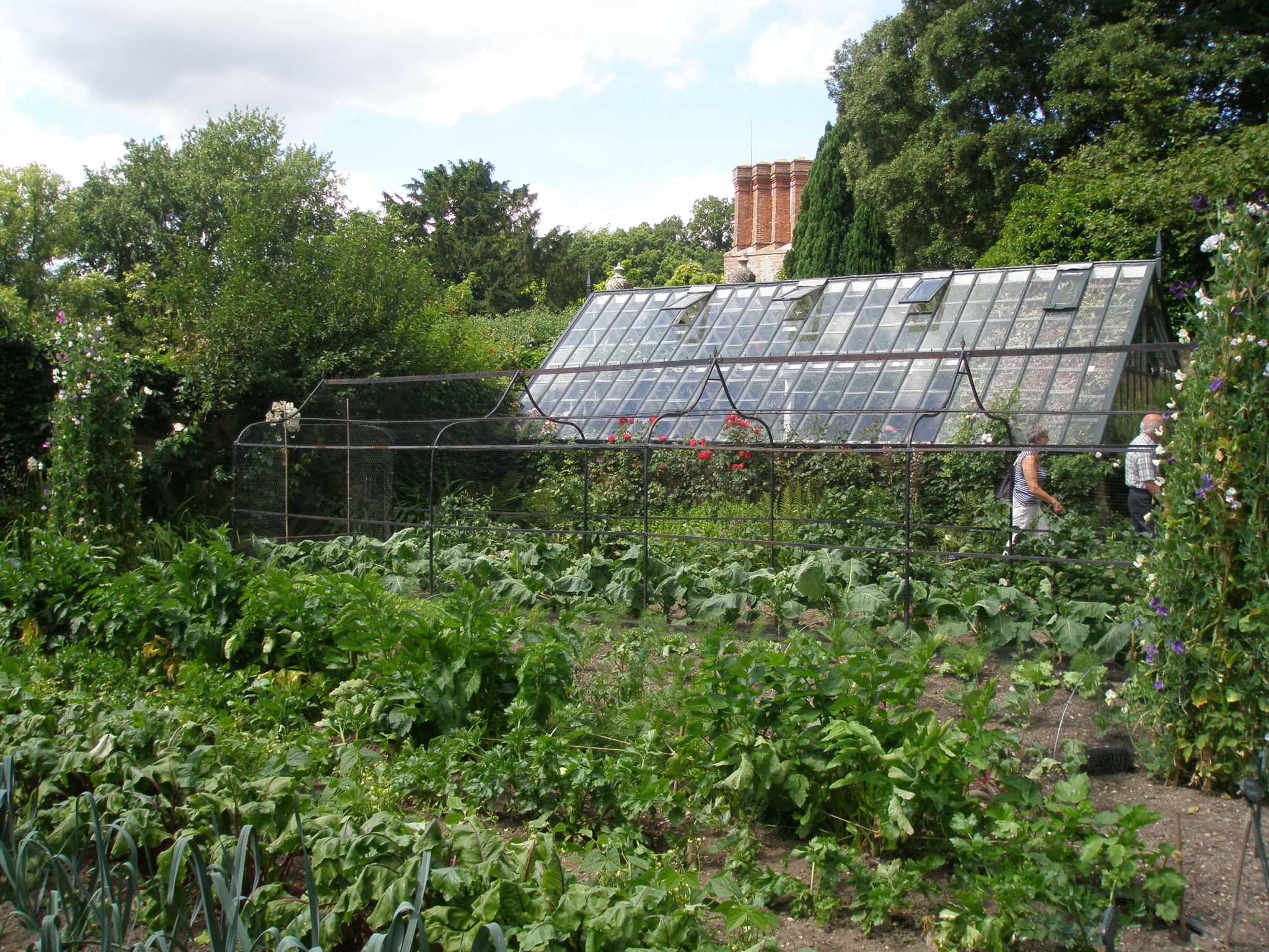 A Glass House, in the Potager