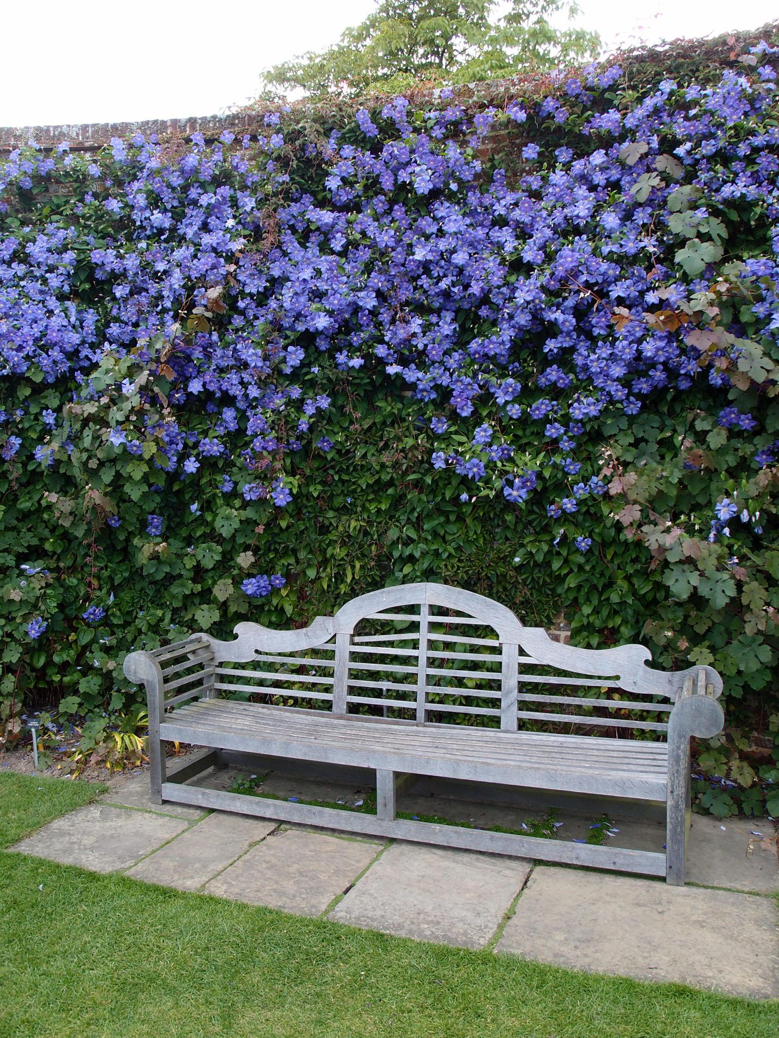 Rose Garden Bench, during a rare moment when it's not occupied.