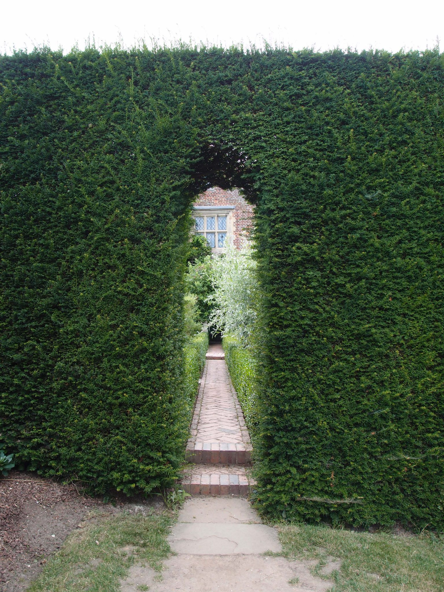 At the Northwestern edge of The Orchard, a narrow opening in the Yew Walk hedge leads us into the White Garden.