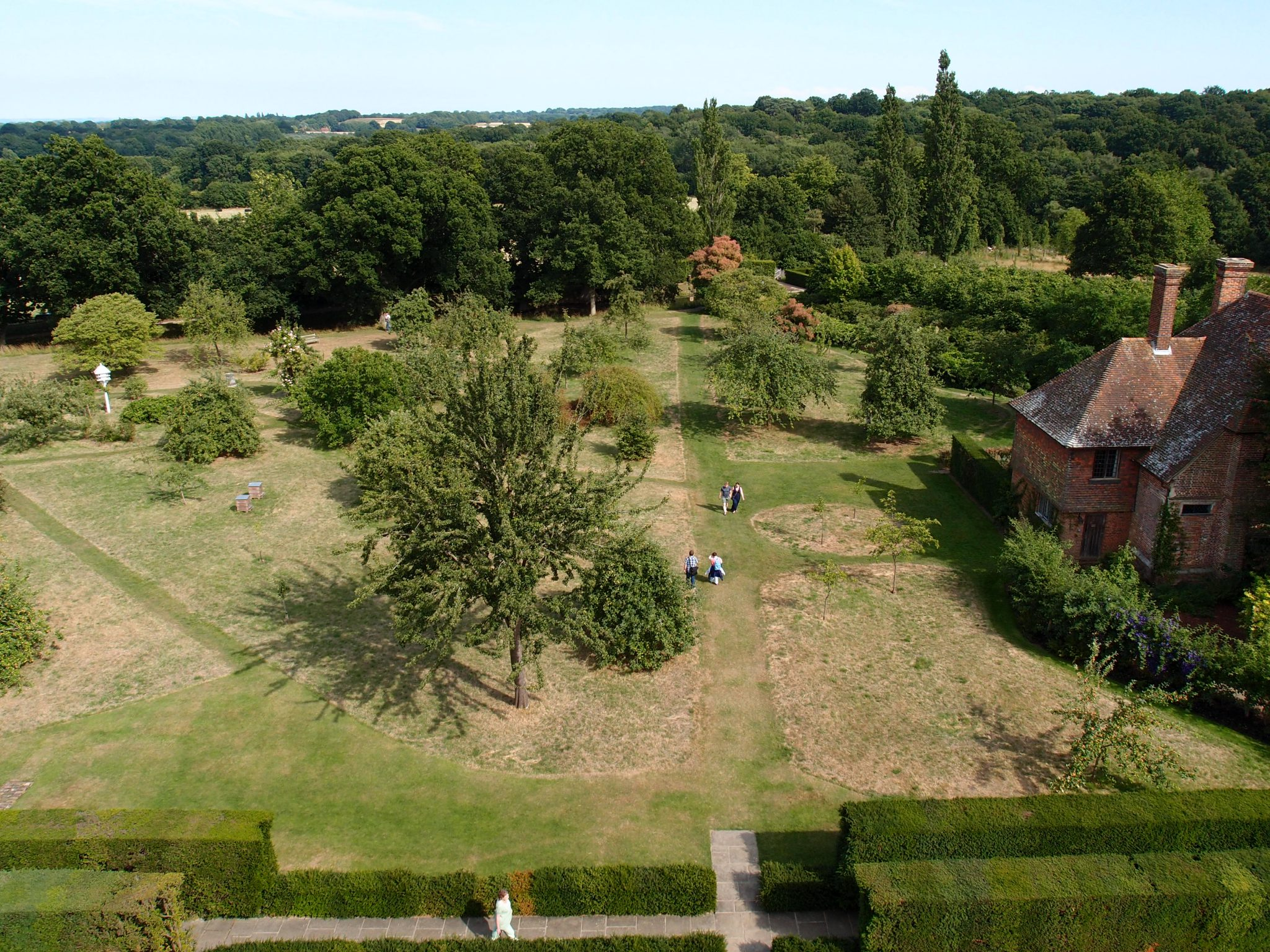 Looking Southeast. The Orchard, with the South Cottage to the right. The Yew Walk is directly below.