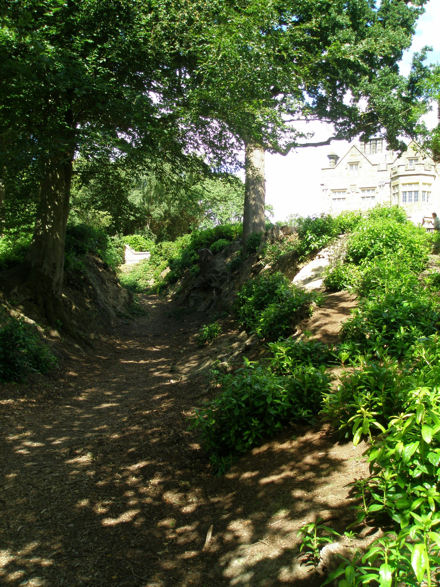 Ancient Drovers' Road, with the New House in the background.