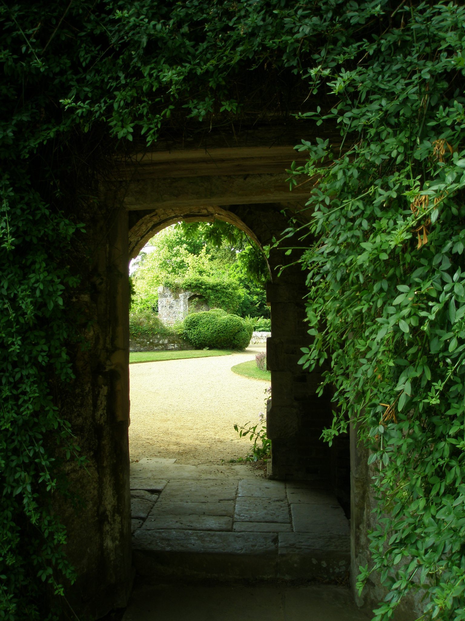A peek OUT, from the same, small walled garden