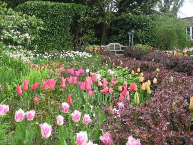 Every year, for 10 days in the Spring, Pashley Manor holds a Tulip Festival, when over 20,000 blubs--and about 100 different varieties of Tulips--burst into bloom. This photo shows a corner of the Rose Garden, during 2013's Tulip Festival. Image courtesy of Pashley Manor.