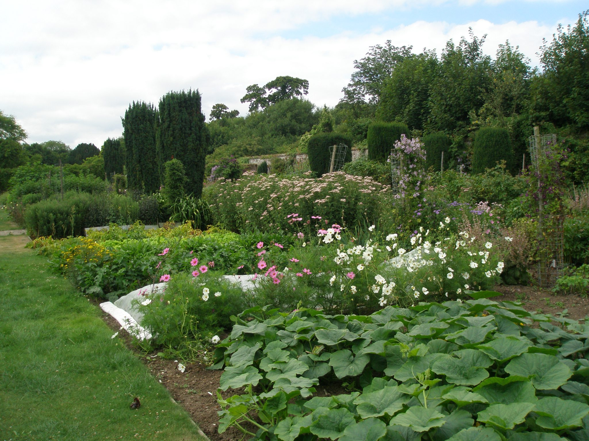 Abundant veggies and annual flowers in the beautifully-tended Walled Garden.
