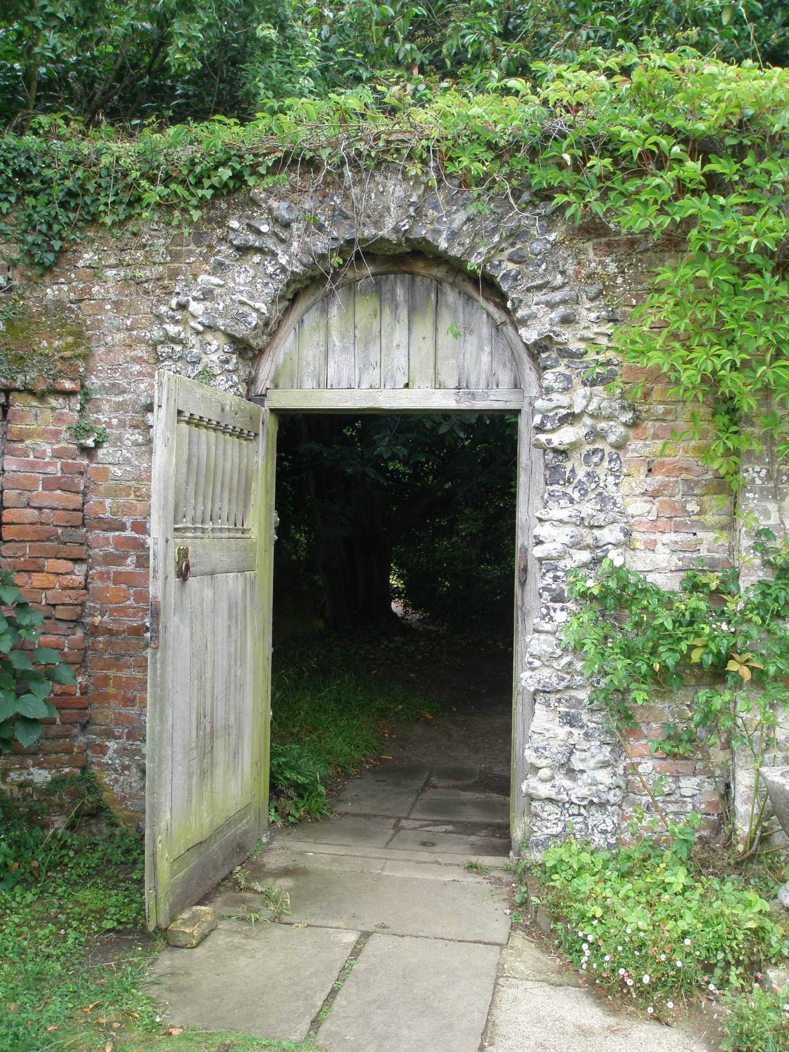 Exiting the Walled Garden through yet another split-flint decorated archway, we headed into the shadows of the Arboretum, and the Woodland Garden.