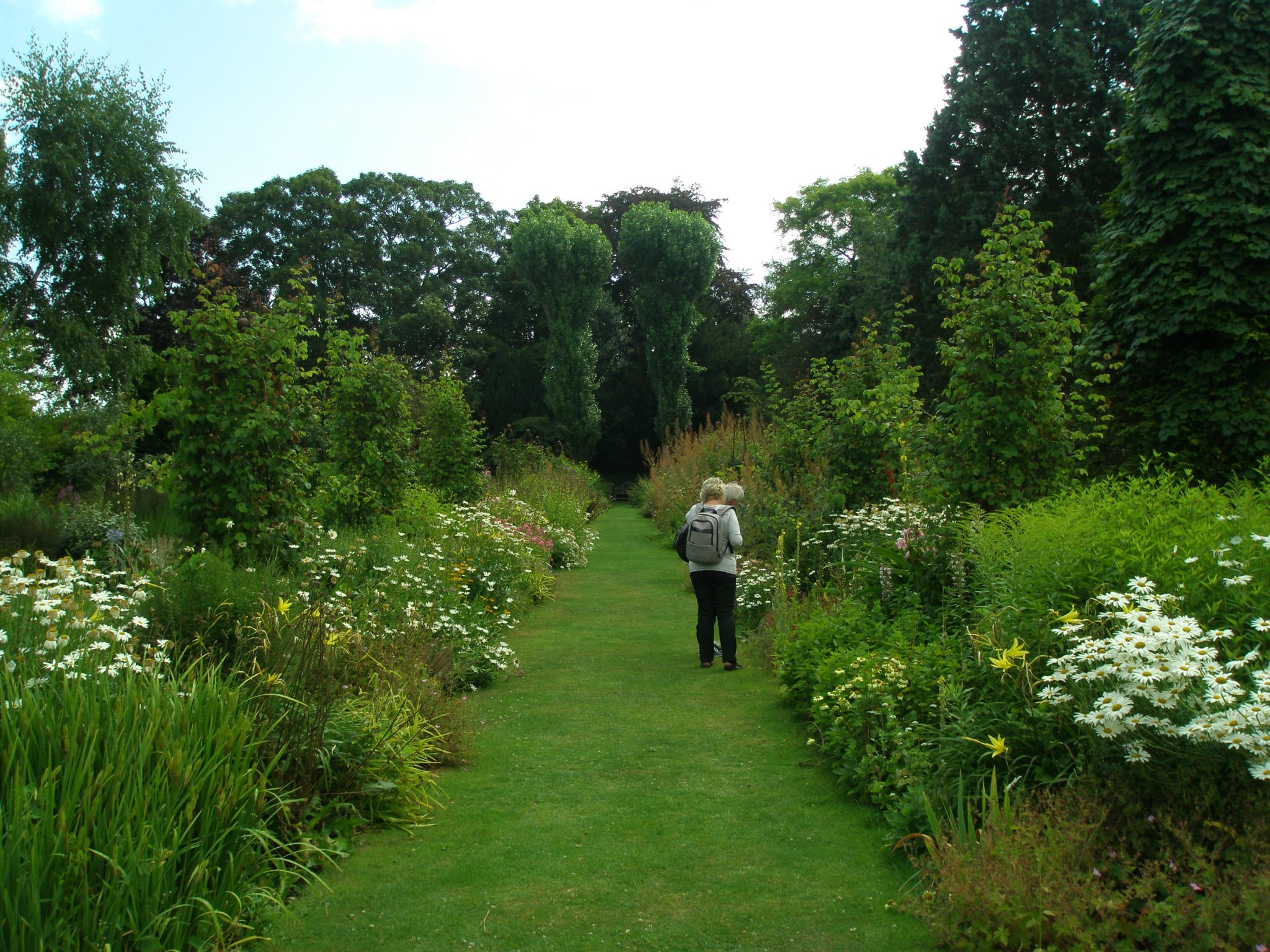 The central path through the Main Perennial Border, with a view toward the back of the 3.5 acre property.