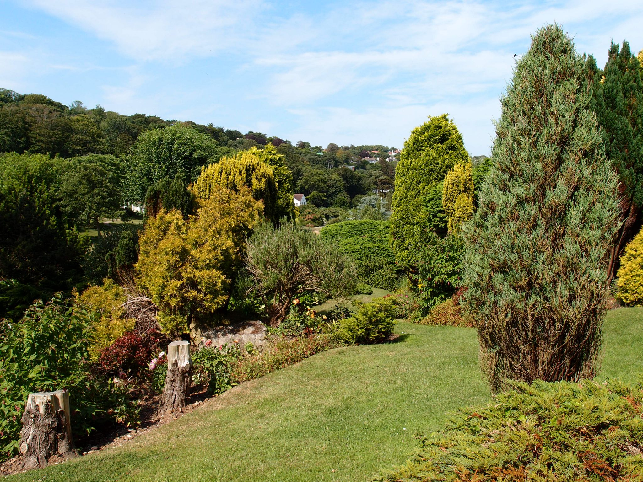 The arboretum, above the pond. It's beautiful at St.-Margaret's-at-Cliffe, isn't it!