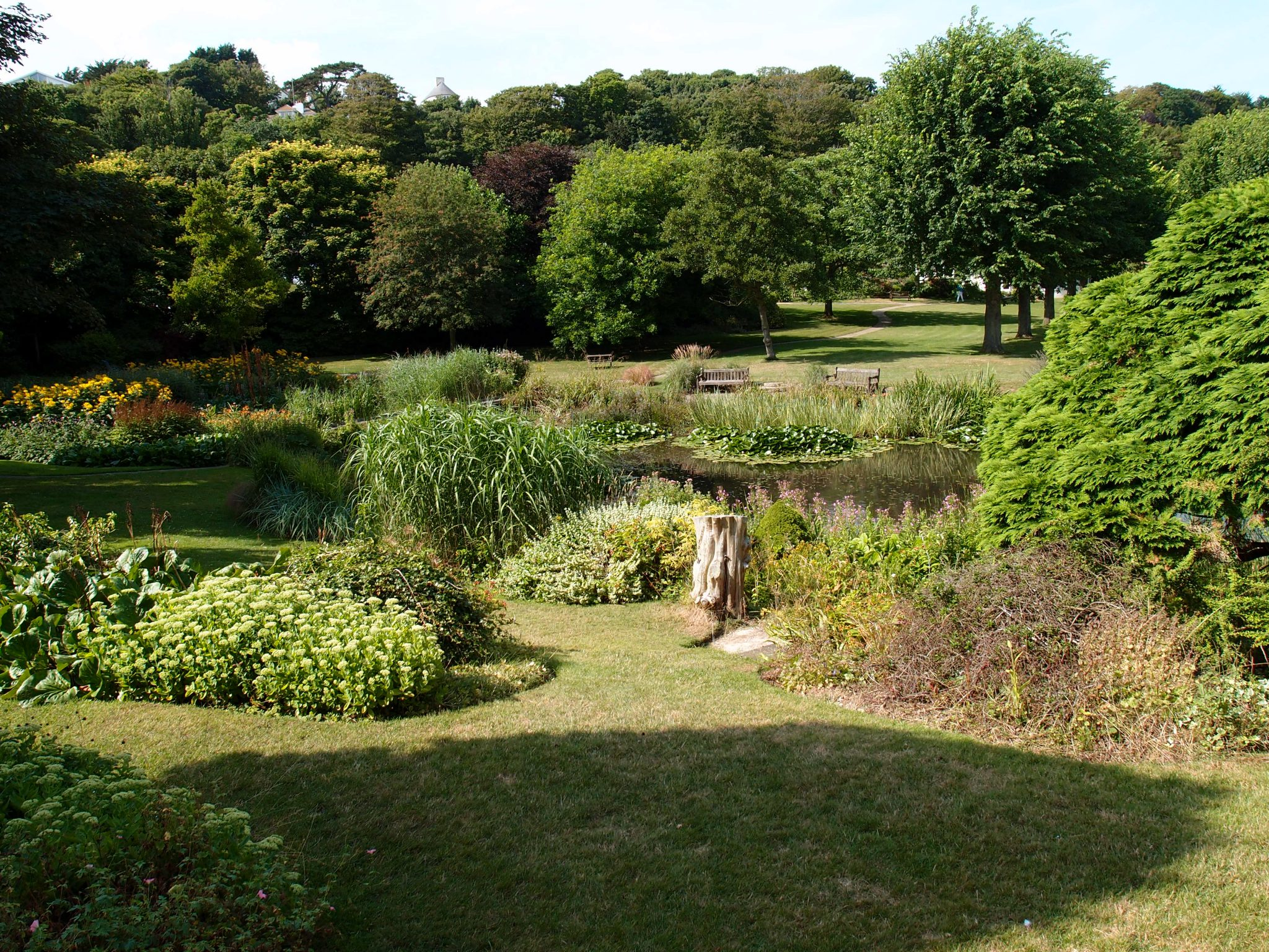 View of the pond, from the slopes of the arboretum.