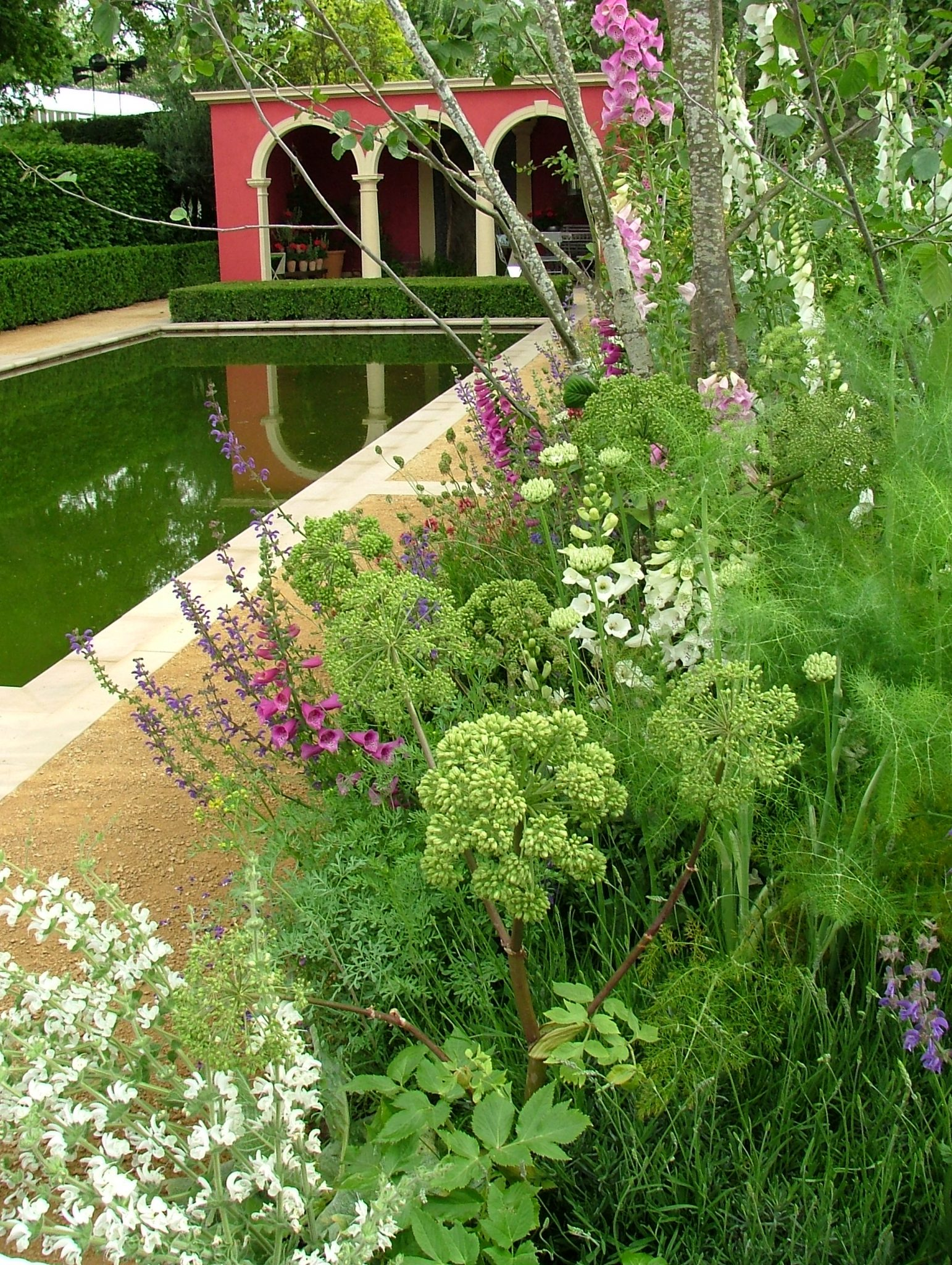 This one nicely-planted border slightly redeemed the Brand Alley Garden. Photo by Anne Guy