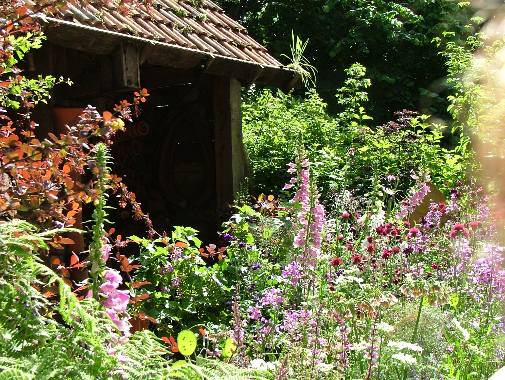 Potter's Garden. Note: the Artisan Gardens all sit on plots measuring 5 meters by 4 meters. Photo by Anne Guy.