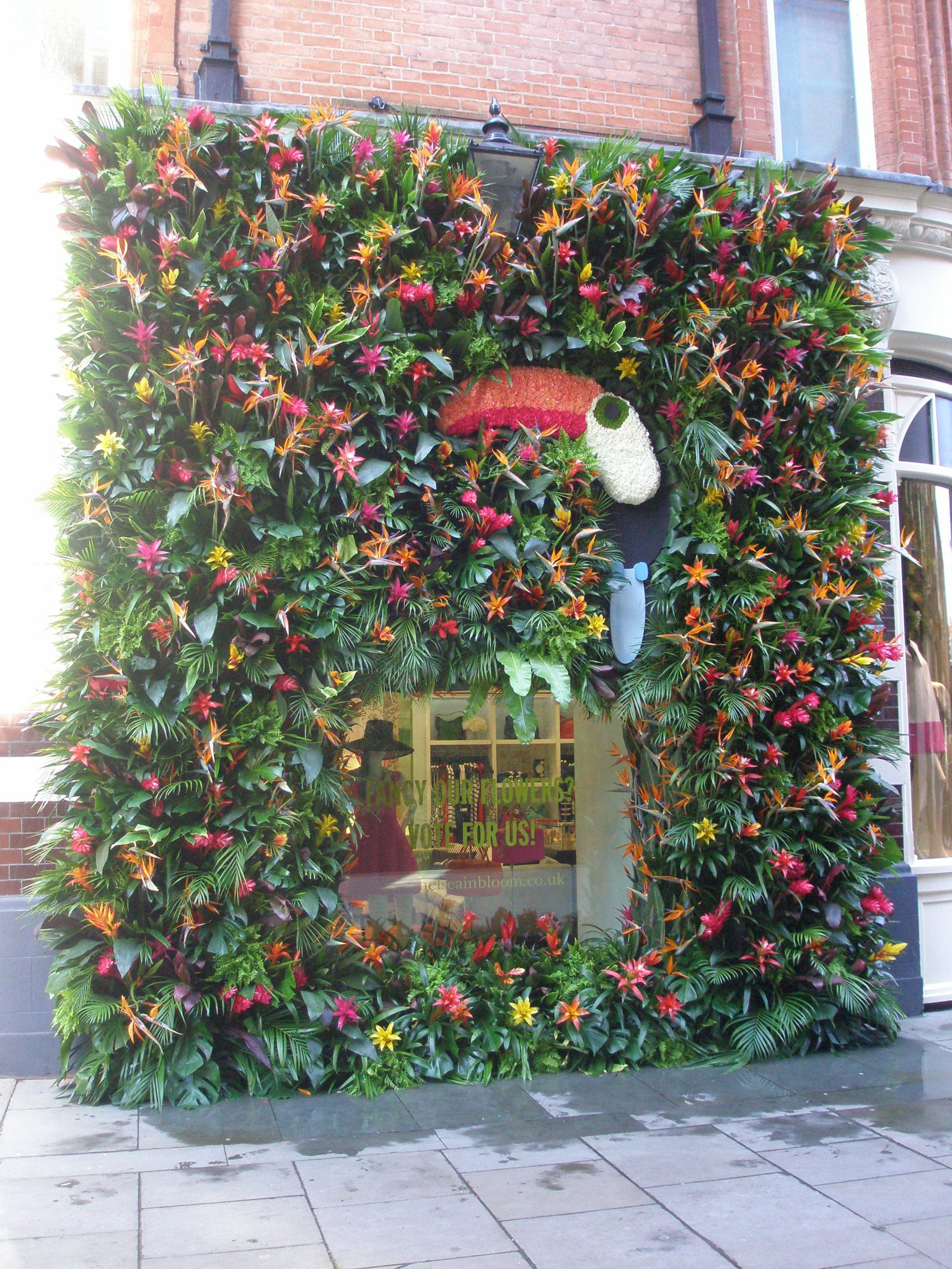 Now, back to year 2014. Here, a less-towering living wall, this one at Kate Spade on Pavilion Road, which is directly opposite the Green Wall. The Royal Horticultural Society awarded the 2014 Chelsea In Bloom GOLD to this exuberant and exotic display.