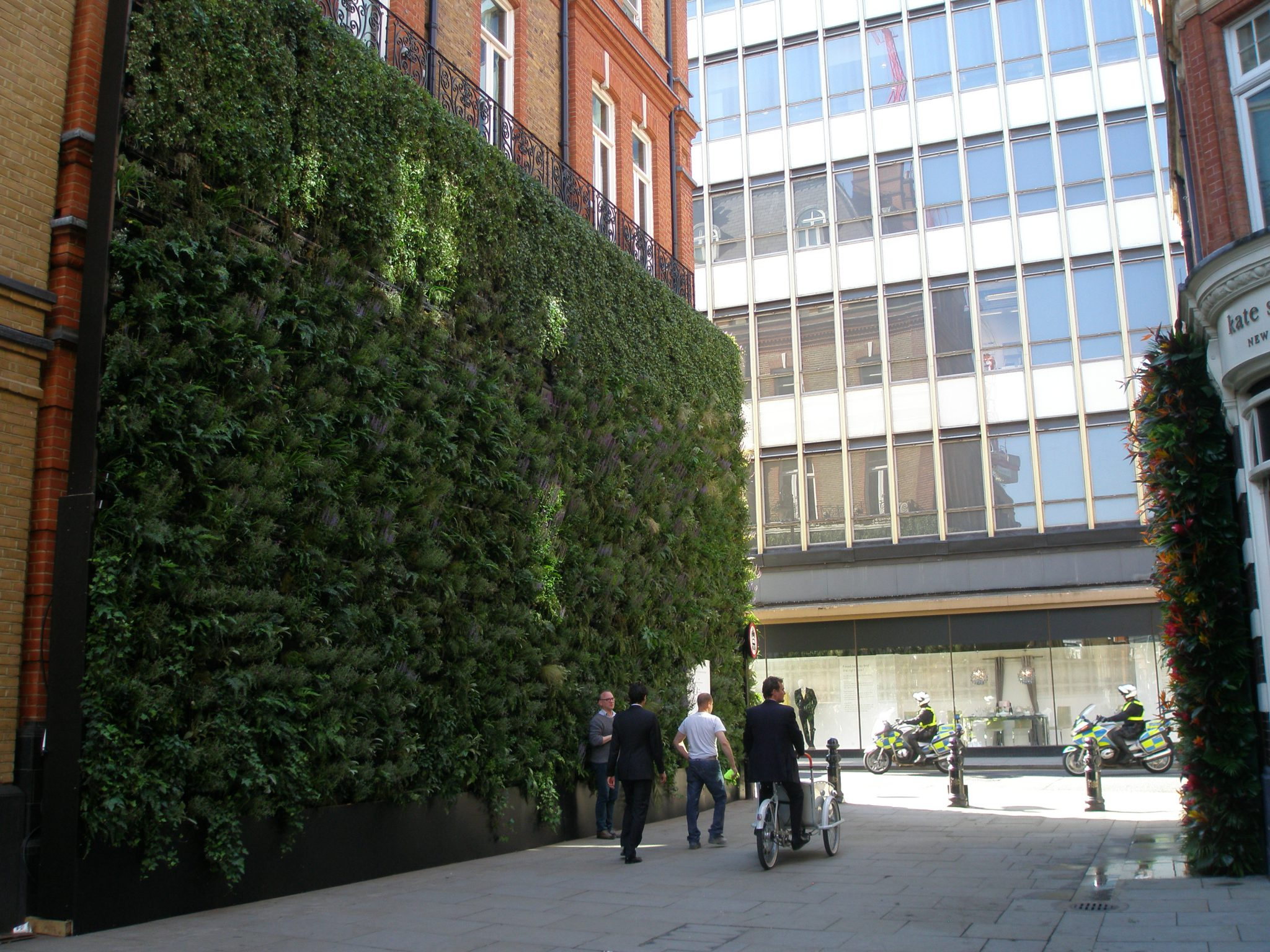 The Green Wall continued around the corner, to the pedestrian mall on Pavilion Road. The Symons Street elevation of the Peter Jones Department Store is visible at the end of the mall.