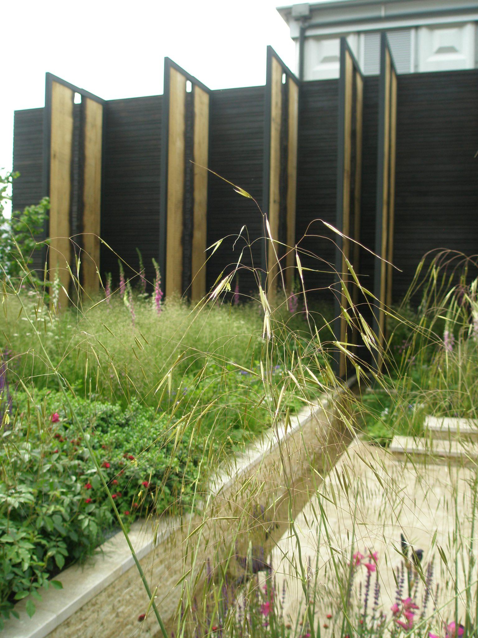 Cloudy Bay Sensory Garden.
