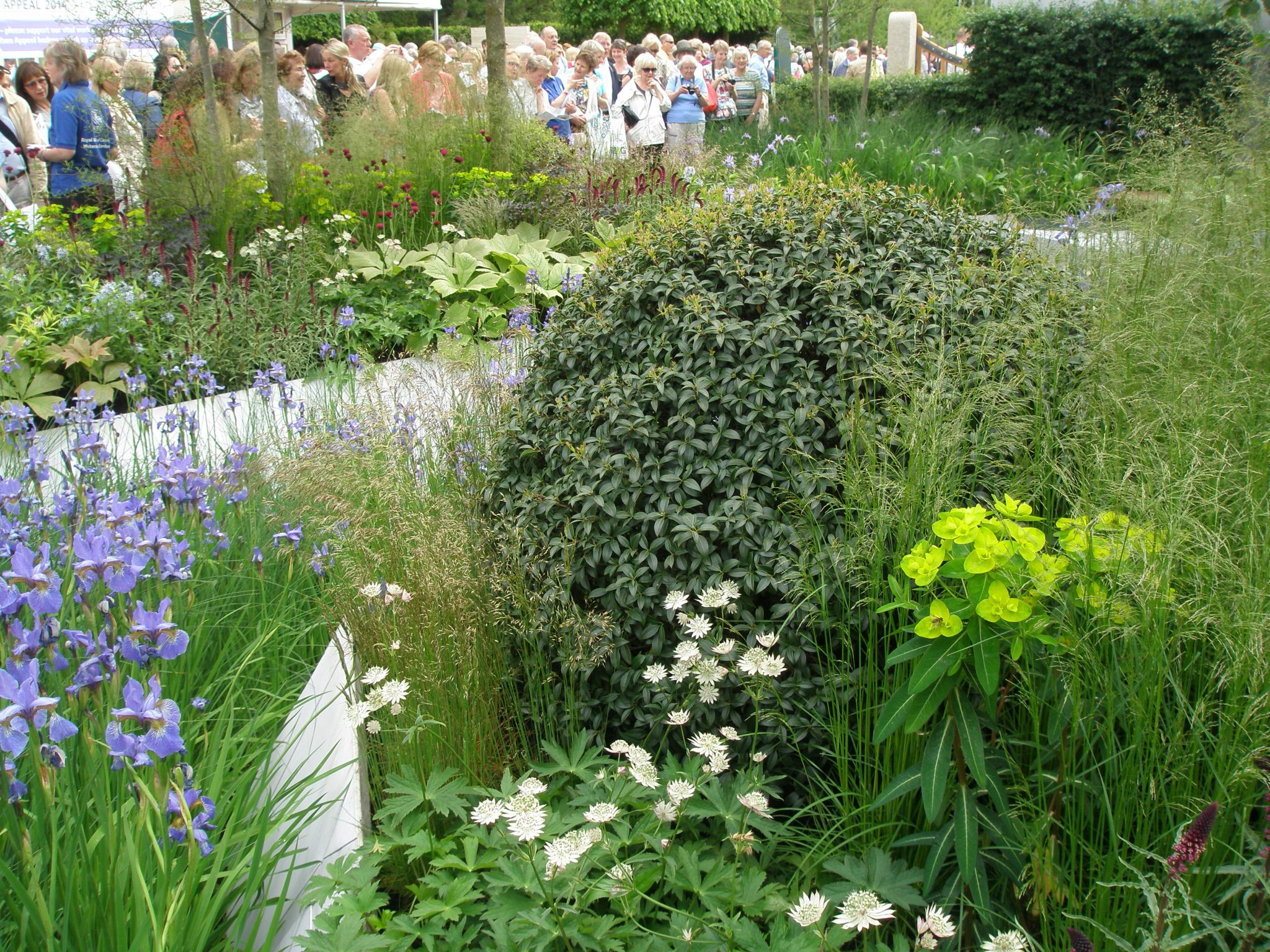 RBC Waterscape Garden, with Sea of Humanity