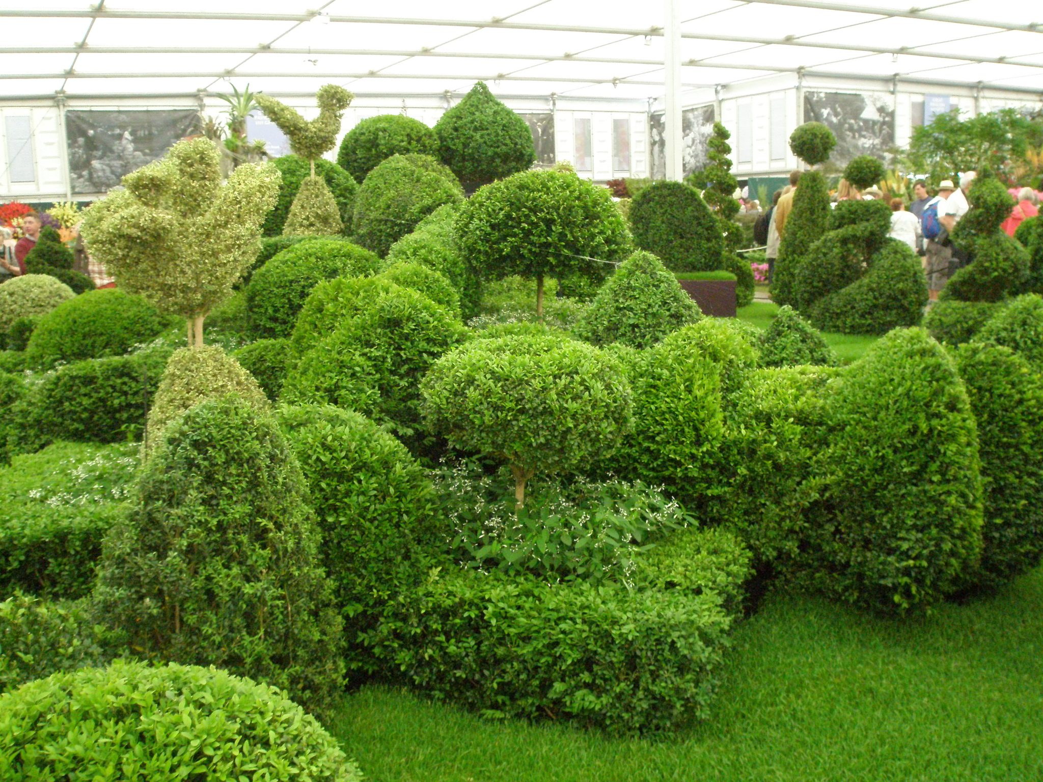 Topiary-To-Go