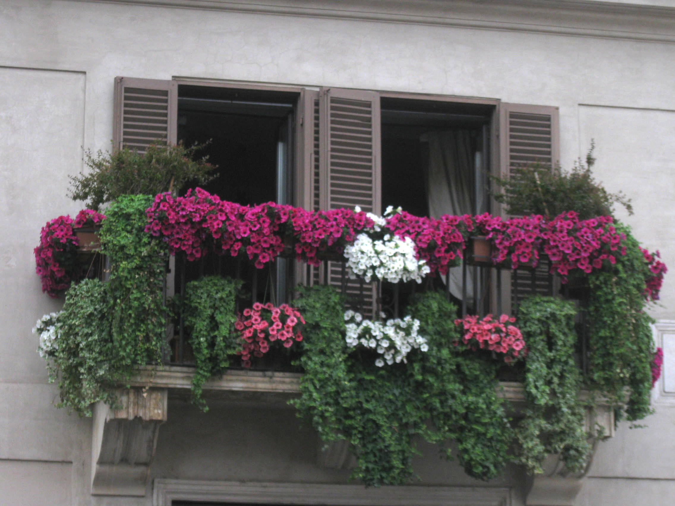 On a building behind the Fountain, a glorious floral display. Photo by Donn Brous.