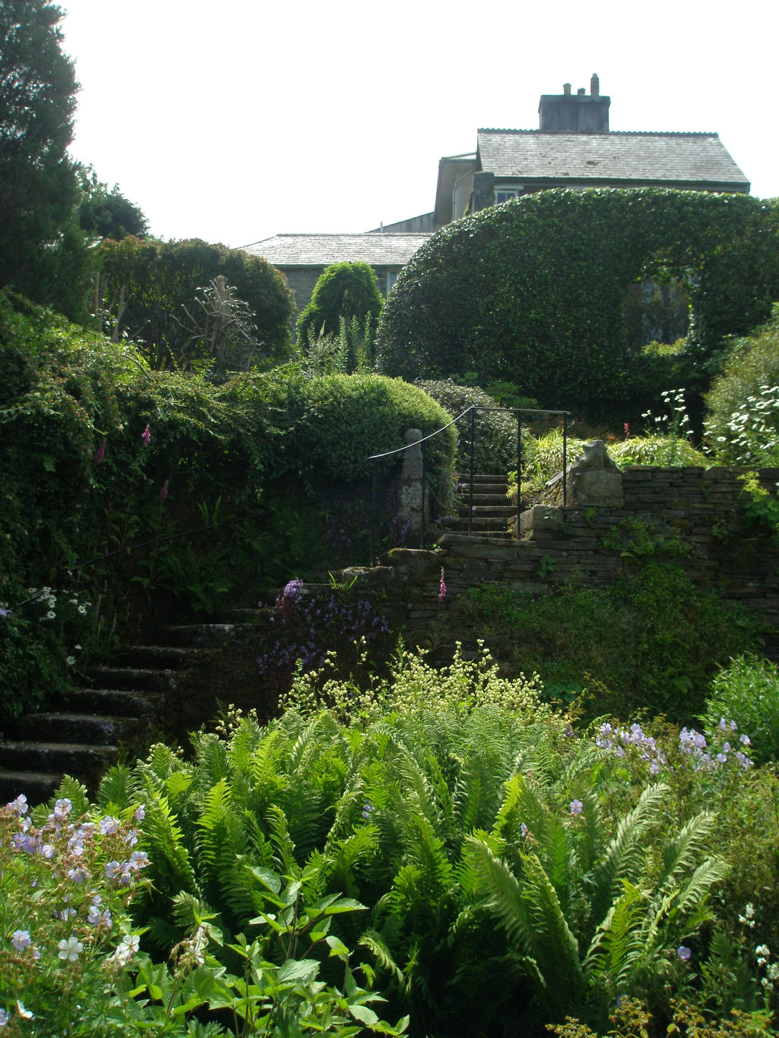 From the Tennis Court Lawn, Tom's Steps lead up the the Camellia Walk, and to the House.
