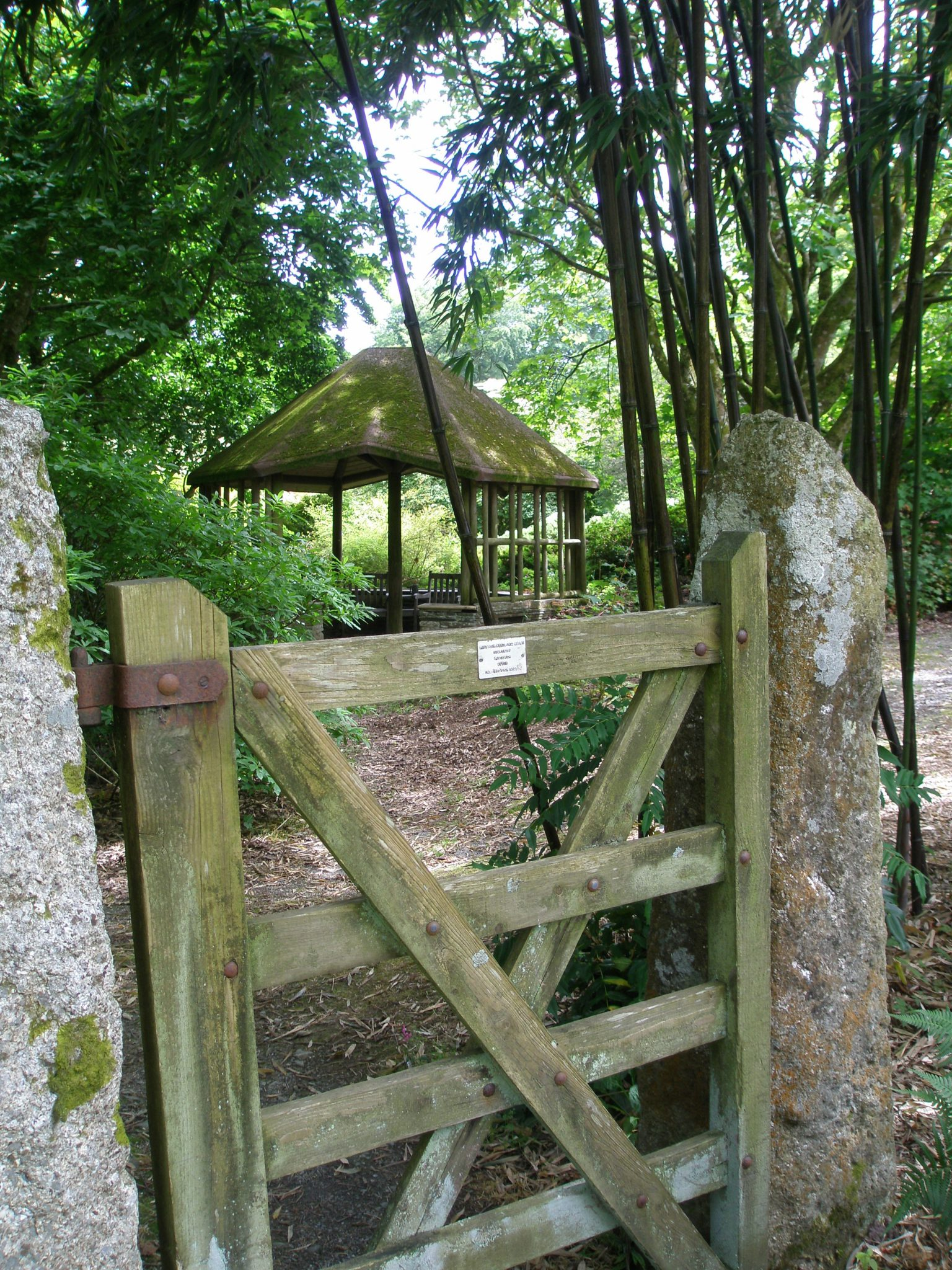 After crossing the Wisteria Bridge, there's this surprise of a Bamboo Grove, which encircles a Rustic Summerhouse.