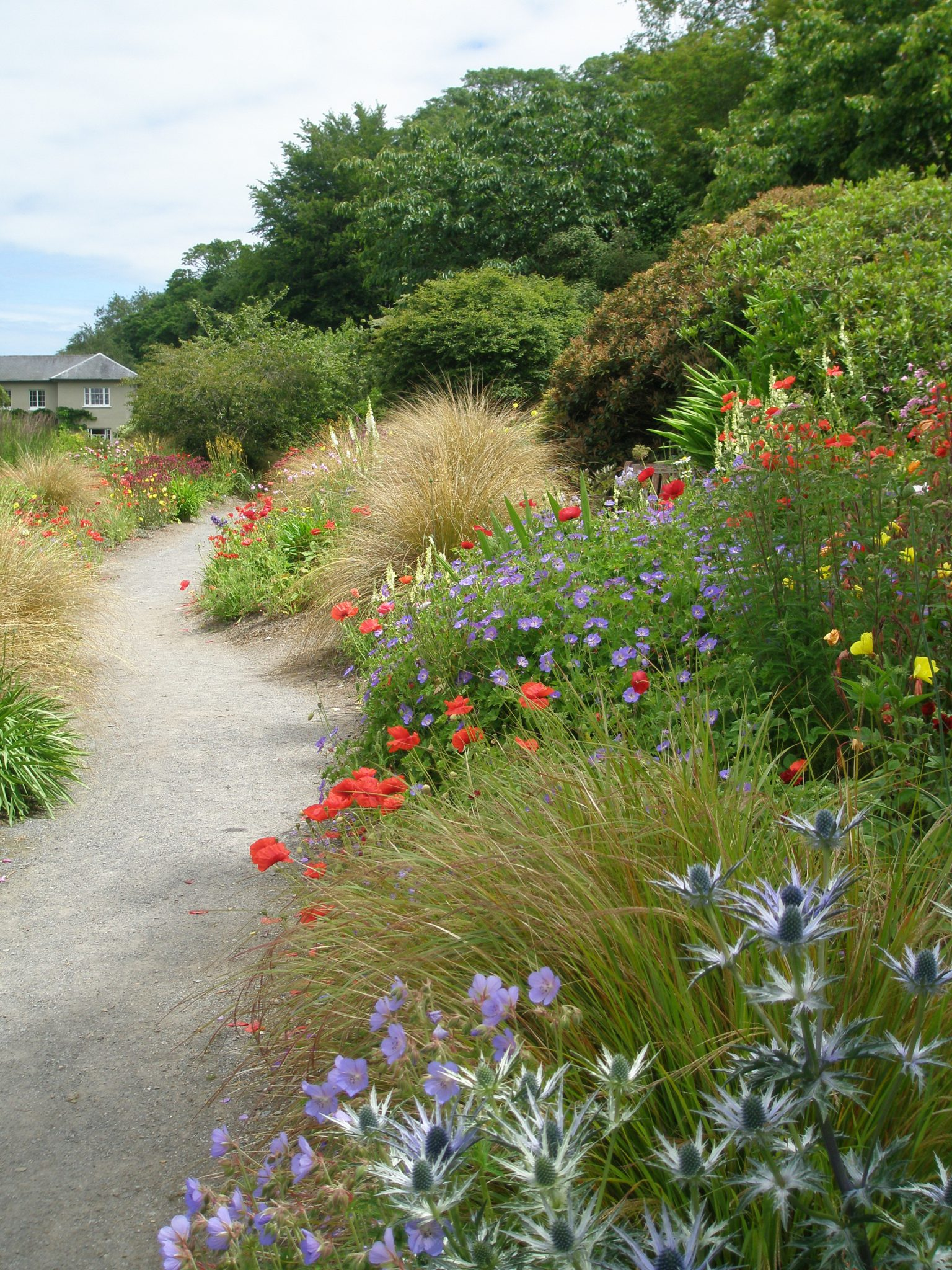 The central path through the South African Garden