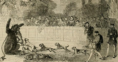 Bear Baiting. Image courtesy of Dartington Hall.