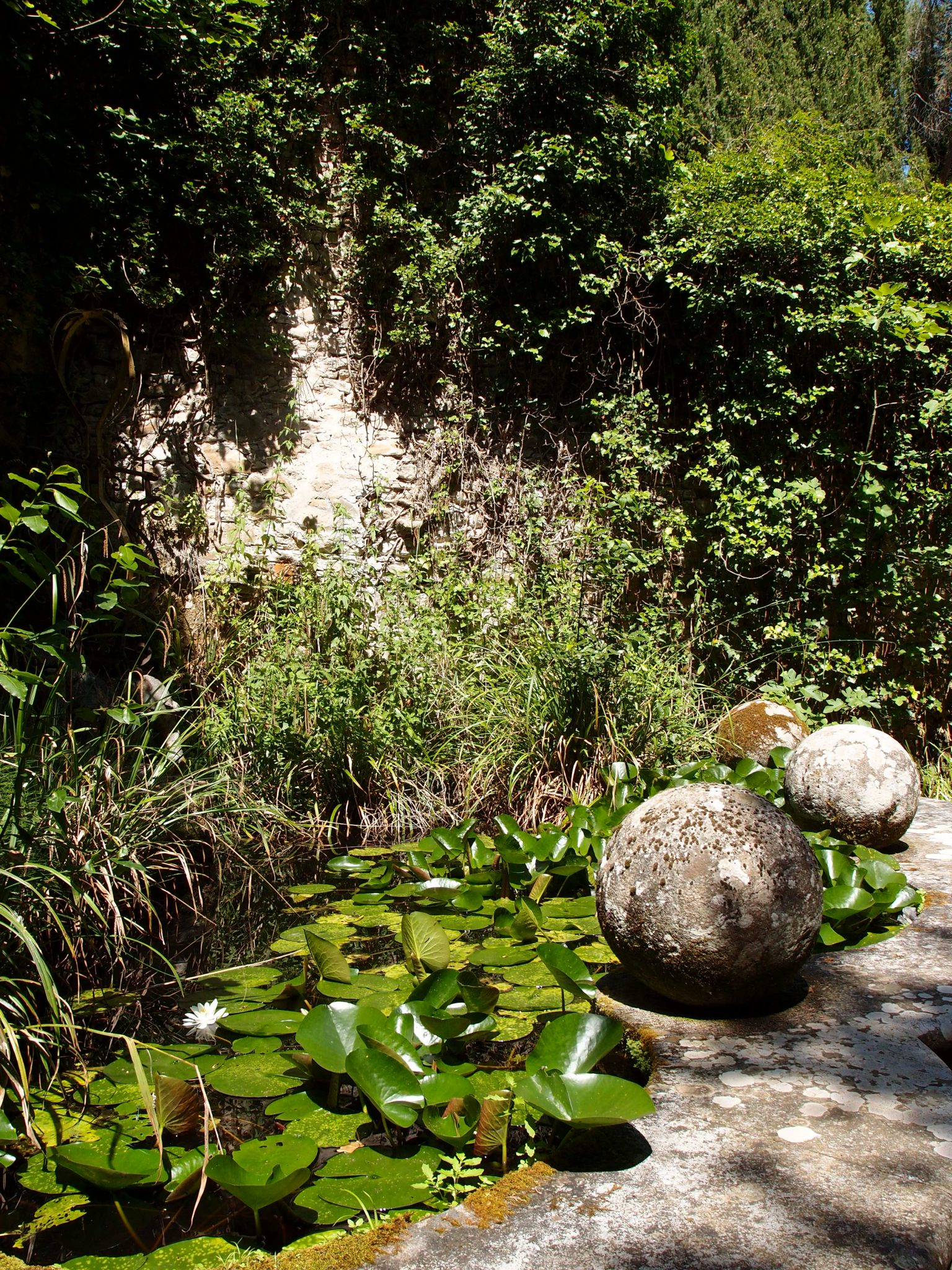 We arrive at a small Lily Pond and terrace, which are enclosed by high stone walls.